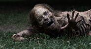 Walking-Dead-bicyclegirl-e1317753946100