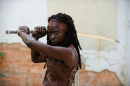 Walking-dead-michonne 510