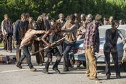 Normal TWD 709 GP 0823 0189-RT-GN-min