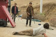 Normal FTWD 214 PI 0531 0109-RT