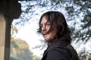 811 Daryl