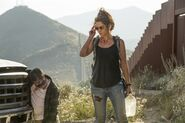 Normal FTWD 214 PI 0608 0443-RT-GN