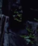 Whisperer118 (Guardians)