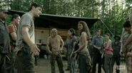 The.Walking.Dead .S04E07