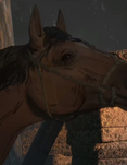 TUB Ruby's Horse