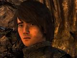 Джеймс (видеоигра)