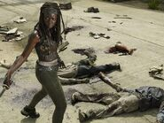 The-Walking-Dead-promo-Michonne-1024x768