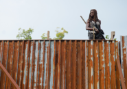 AMC 610 Michonne Lookout