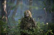 811 swamp Walker