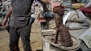 Jadis Trash Cat