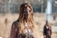 The-walking-dead 3x16 final