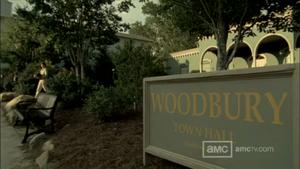 Woodbury3