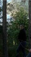 Screenshot 2019-11-13 The Walking Dead - s08e01(5)