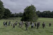 10x02 Whisperers herd