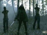 Grupa Michonne (Serial TV)