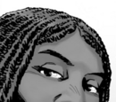 Michonne (Comic Series)