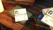 WWD Sam Passport