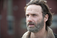 Anonymous-source-claims-andrew-lincoln-rick-grimes-wants-to-be-written-off-the-walking-681470