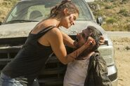 Normal FTWD 214 PI 0608 0303-RT-GN