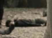 Srs mitchell dead