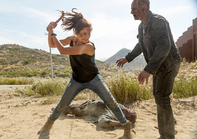 AMC FTWD Wrath