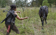 AMC 513 Daryl Approaches Buttons