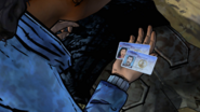 AmTR Driver's Licenses