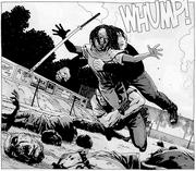 Michonne Bruce Gabe 31x18