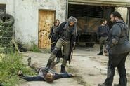 Normal TWD 703 GP 0525 0311-RT-GN
