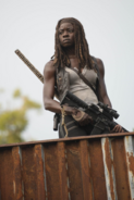 AMC 610 Michonne on Watch