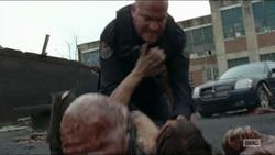 Licari Daryl