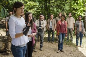 Normal TWD 713 GP 1006 0100-RT-min
