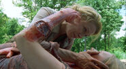 Walking-dead-season-1-5-wildfire-andrea-amy