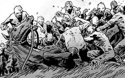 Horse death 165