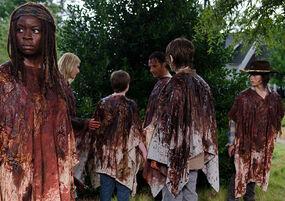 The-walking-dead-episode-609-michonne-gurira-935