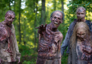 AMC 601 Walkers Woods