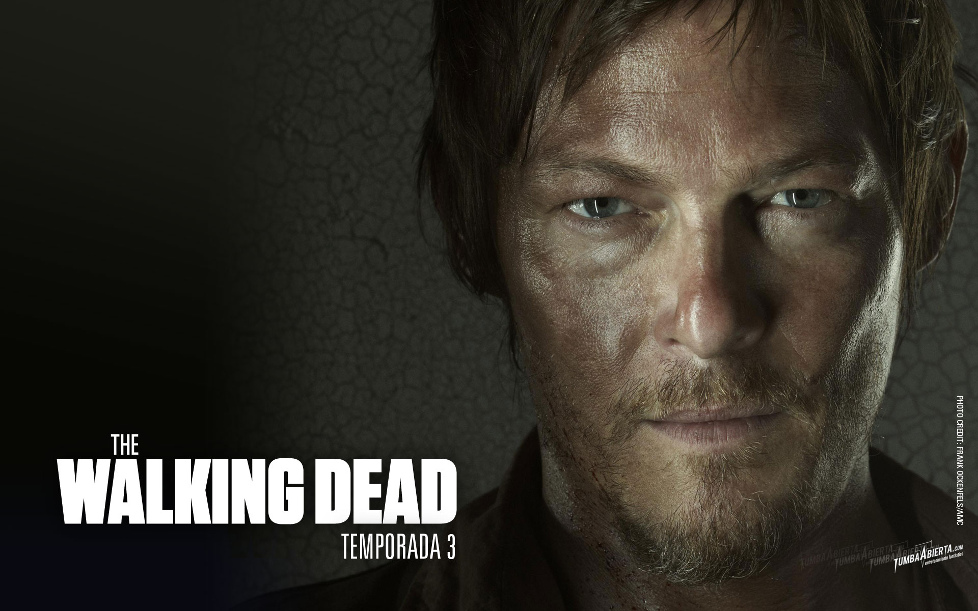 Wallpaper The Walking Dead T3 Hd Daryl Dixonjpg