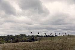 AMC 915 Field
