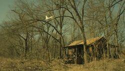 John Dories Cabin