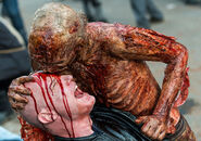 The-walking-dead-episode-803-walker-935