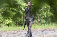 TWD 806 JLD 0619 1140-RT