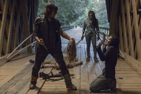 TWD 909 JLD 0816 01147 RT