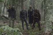 10x06 Negan and Whisperers hunting