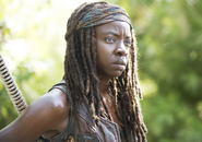 AMC 509 Michonne Outside