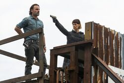 Normal TWD 716 GP 1108 0132-RT-min