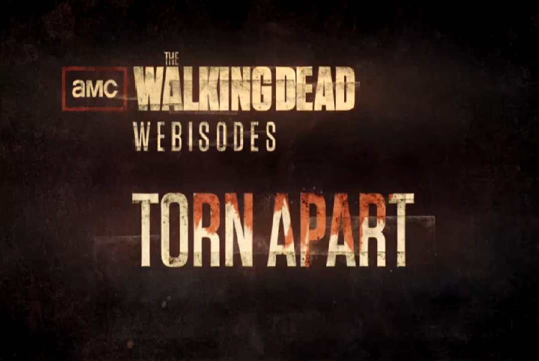 the walking dead xvid