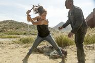 Normal FTWD 214 PI 0608 0255-RT-GN