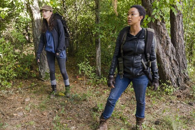 File:Sasha Williams and Rosita 7x14 The Other Side Promotional Still .jpg