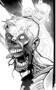 Zombie 27x25