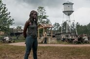 9x02 Michonne by the watertower